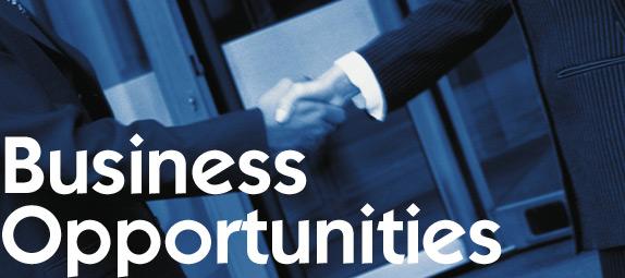 Afaceri cu investitii minime